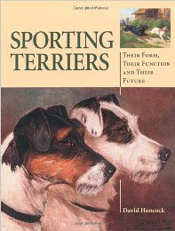 sportingterrier